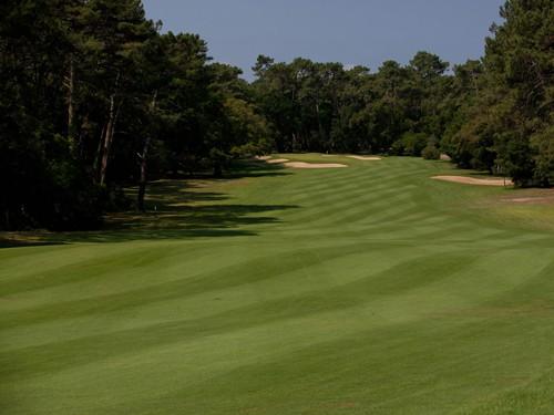 diapo-golf2