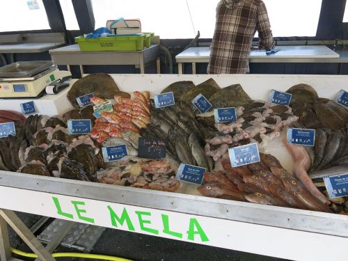 marché_poissons_Capbreton